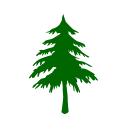 ikonica-drvo