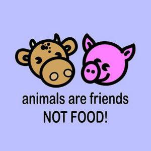 ciljevi BeGeVege festivala - zivotinje su nasi prijatelji a ne hrana!